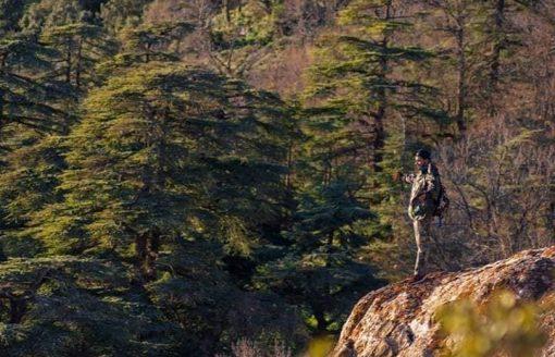 في الجزائر..تمتع بأجمل المناظر من ولاية تيسمسيلت بـ13 صورة